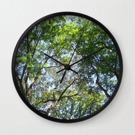 Graduation, Wellesley College Wall Clock