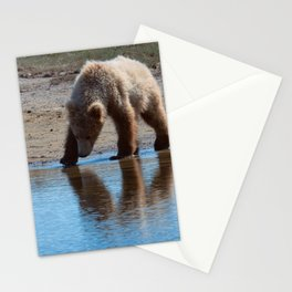 Grizzly Cub Drinking from Stream  Alaska Katmai National Park #Socety6 Stationery Cards
