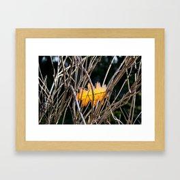 Golden Leaf Framed Art Print