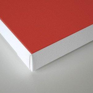 PANTONE 18-1550 Aurora Red Canvas Print