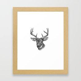 A deer 5 Framed Art Print