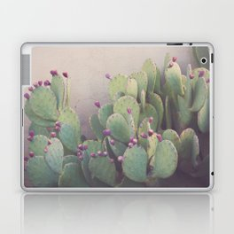 Still Life in Marfa Laptop & iPad Skin