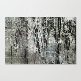 Lost in the Trees Canvas Print