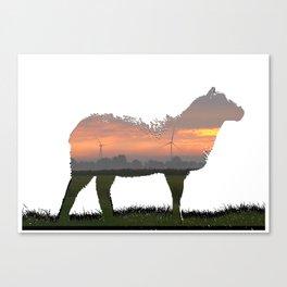 sunrise sheep Canvas Print
