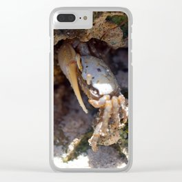 Crab No.3 Clear iPhone Case