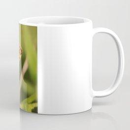 Flying Nature Coffee Mug