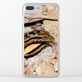 Watercolor Reptile Big-Crested Lizard, Hey, is That My Tail? Clear iPhone Case
