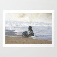 Come swim with me  Art Print