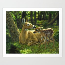 Whitetail Deer and Cute Spring Fawn Art Print