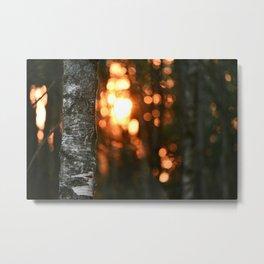 Sunset in Drawsko 5 Metal Print
