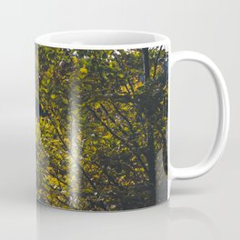 Landscape photo - forest in autumn Coffee Mug