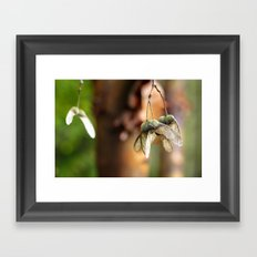 ...cause and effect... Framed Art Print