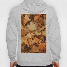 Autumn Whispers Hoody