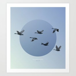 [4.10—4.14] Wild Geese Fly North Art Print