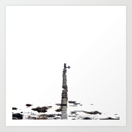 stones at sea Art Print