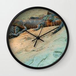 Gator's In The Sun Wall Clock