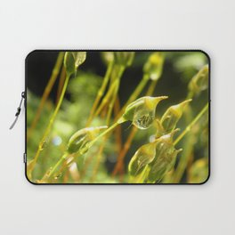 forest cover /Agat/ Laptop Sleeve