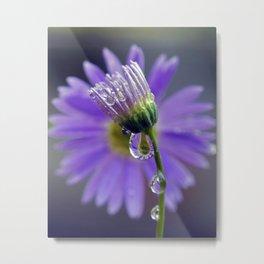 Purple dew 2 Metal Print