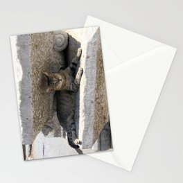 Guardian Of The Ruins Stationery Cards