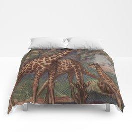 Vintage Giraffe Painting (1909) Comforters