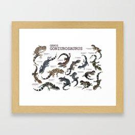 Genus Goniurosaurus Framed Art Print