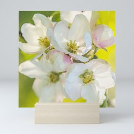 Close-up of Apple tree flowers on a vivid green background - Summer atmosphere Mini Art Print