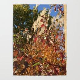 Autumn Beginning Poster