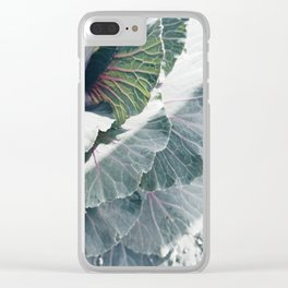 Cabbage in Sunlight Clear iPhone Case