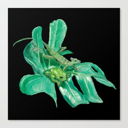 Lizard, Frog, Leaf Canvas Print