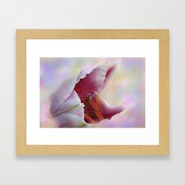 soft and dreamy -5- Framed Art Print