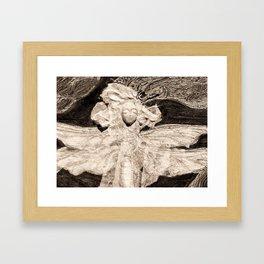 Dragonfly in Sepia Framed Art Print