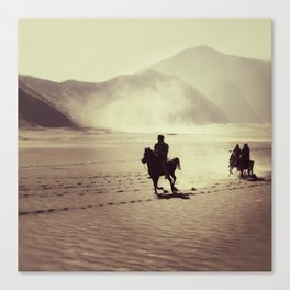 savana, bromo Canvas Print