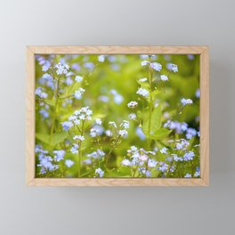 Forget-me-not Flowers In Nature #decor #society6 Framed Mini Art Print