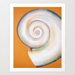 Pearl White Moon Shell Art Print