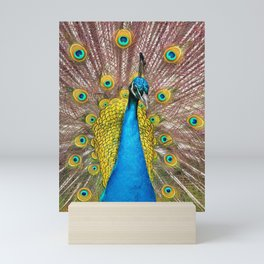 Colorful Peacock, Johnstown Castle, Wexford, Ireland Mini Art Print