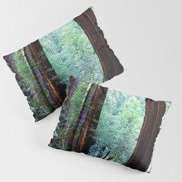 Muir Woods 2 Pillow Sham