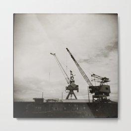 { dancing cranes } Metal Print