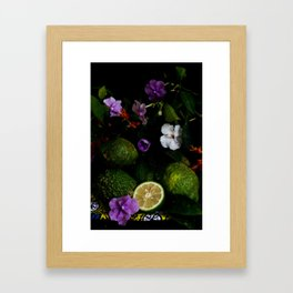 Citrus Blooms Framed Art Print
