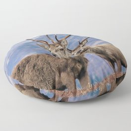 Stags Floor Pillow
