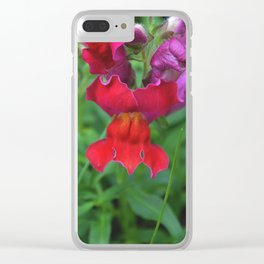 Snapdragons Clear iPhone Case