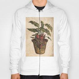 Heart Plant Hoody