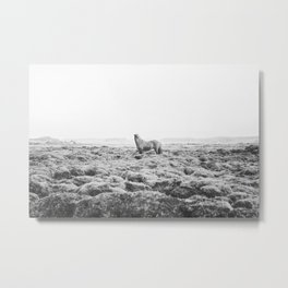 Horse Print with a Modern Style Metal Print