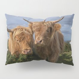 Highland Cows Pillow Sham