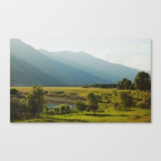 Wading Deer Canvas Print