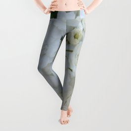 Deutzia Pure and Simple Leggings