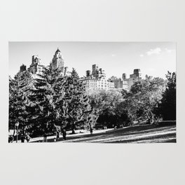 Central Park NYC Rug