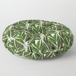 Maranta Lemon lime interior Plant Floor Pillow