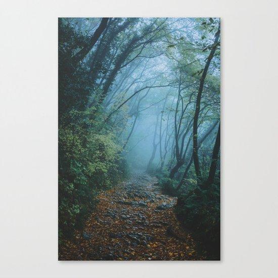 woods path Canvas Print
