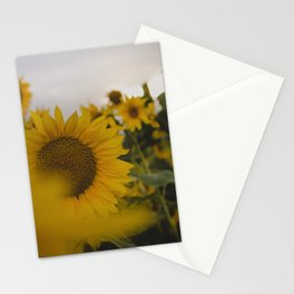 Happy Field Stationery Cards