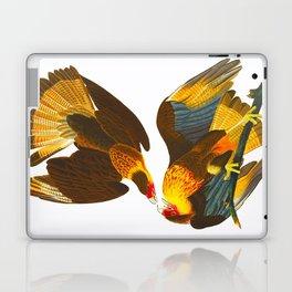 Caracara Eagle Illustration Laptop & iPad Skin